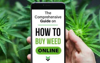 Buy Weed Online in Minutes